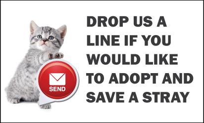 Adopt-Contact